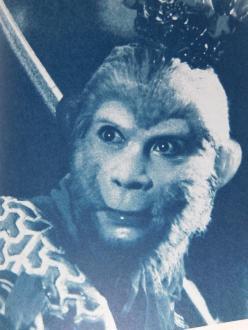 Seriálový Opičí král